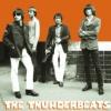 Thunderbeats - герои и подвижники гаражного рока