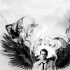 Cas wings