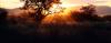 solitudejunkie userpic
