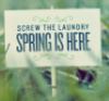 libellulla: spring
