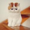 yozhni userpic
