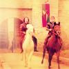 robin guy horses