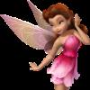 Fairy: rosetta
