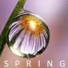 spring200: lady spring