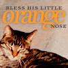 Lorelei Wynter: MAX! bless his orange nose