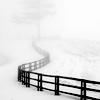 Pyry: fence