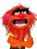 человек-дурак: muppet_animal