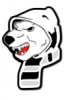 zloynestor userpic