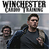 Winchester Cardio