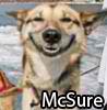 McSure