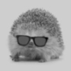 like a hedgehog with sunglasses