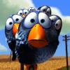 CloudedCreation: birds