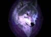 silverwolf_666 userpic