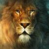 kosland userpic