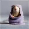 Мышь в скафандре