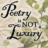 poetry is not a luxury