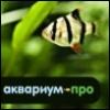 aquarium_pro userpic