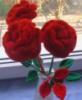 lesya_les: цветы