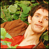 Merlin best face