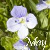 Vesta: May