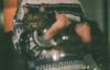 кот #1