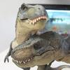 Des: Rex love