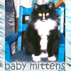 babymittens userpic
