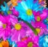 marypatisback userpic