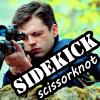 Bucky: Sidekick