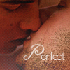Perfect- Shelter