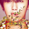 Loon  일로나: ss501: Young Saeng twig