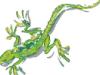 lizard_trip userpic