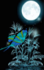 starlightdream1 userpic