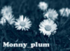 monny_plum