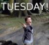 Hogwarts Exposed: TUESDAY!