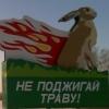 alyonka userpic
