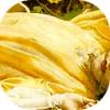 caryatid userpic