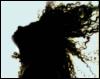 gloomycupid userpic