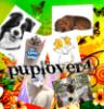 puplover4 userpic