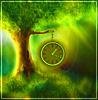 часы на дереве