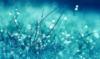 skyedrifter userpic