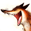 foxfocus