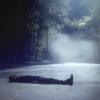 dreamssincerity: Damon; Existential crisis ♥