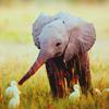 qualapec: Curious Critters