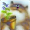 ta_kotoruyu_ya userpic