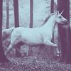 Shakespeare aka Kimberley: ❝ stock; unicorn → dream_fairytale