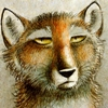 foxy_saidy userpic