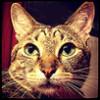tati_ana userpic