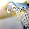 nautilus911 userpic