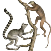 lemurmistakes